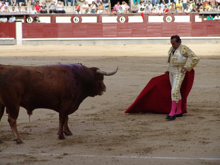 May 1st. 18:30 Novillos de Conde de Mayalde para Miguel Ángel Silva, Clemente y Álvaro García May 2nd 18:30 Toros de EL TAJO/LA REINA para MIGUEL ABELLÁN, IVÁN VICENTE y JUAN DEL ÁLAMO. www.bullfightticketsmadrid.com