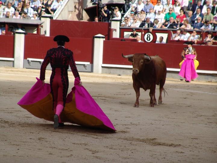 First Bullfight in Las Ventas Bullfighting Ring: March 24th